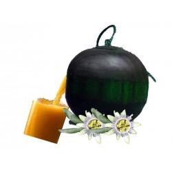 MARACUYA– BOLITA DE OLOR - Ambientador Hogar-Carro - BIORYZ